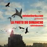 _photo_dimanche_2016
