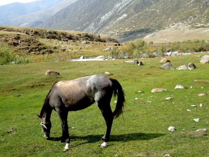 kirghizistan-212