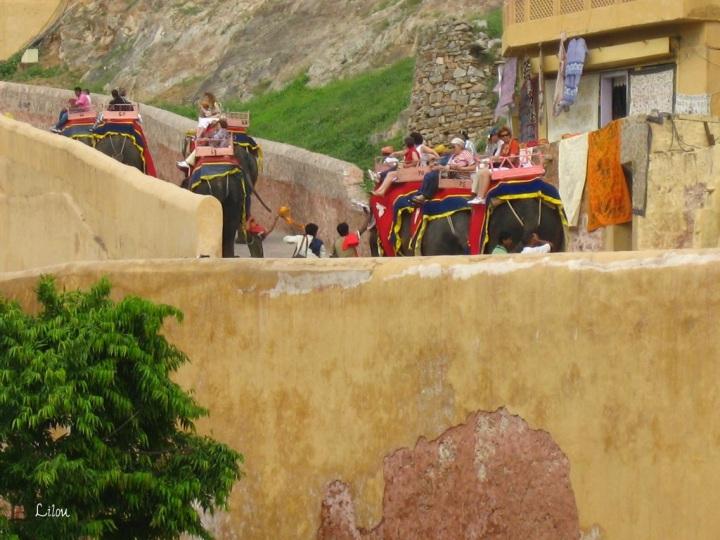 la promenade en éléphant semaine 10 chez Khanal mars voyage