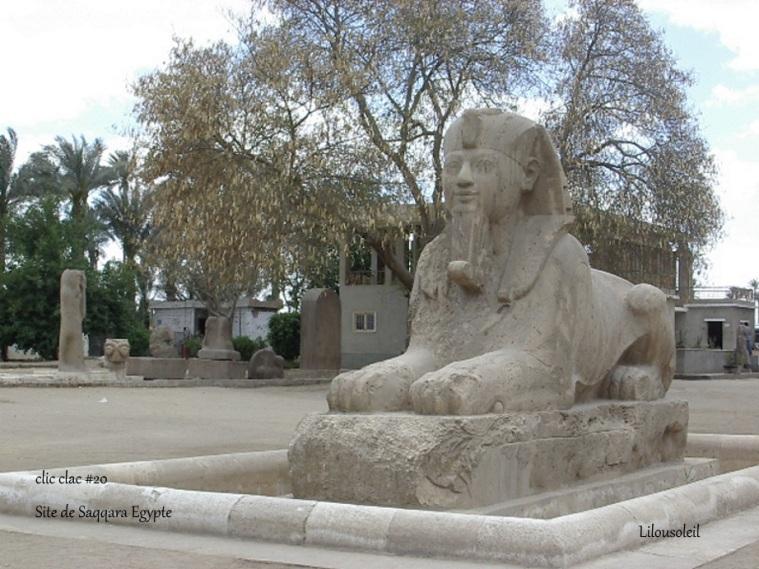 20 - CLic clac toretue Site de saqqara Egypte